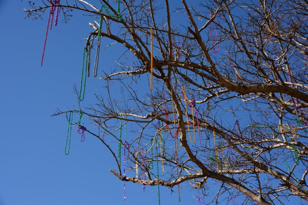 Pensacola - Mardi Gras Halsketten