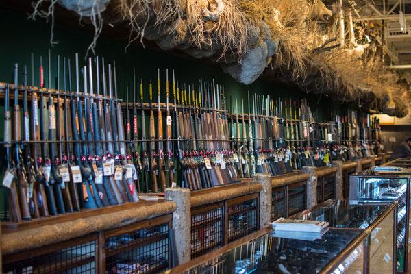 kleine Auswahl an Gewehren