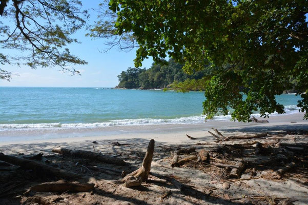 im Manuel Antonio Nationalpark