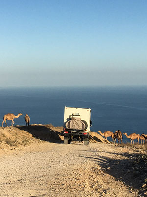 Abfahrt zum Strand von Fazayah