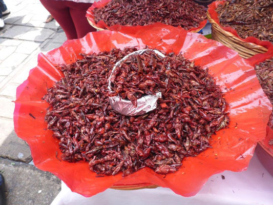 Grasshoppers at the market  in Oaxaca