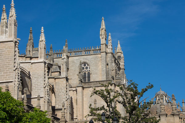 Cathedrale of Sevilla