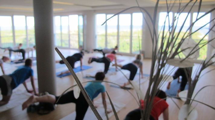Yoganacht Sylt