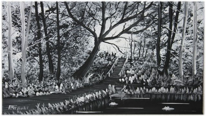 Nr.4g Schwarzer Wald mit Teich. Format 30x40cm Breitkeilrahmen