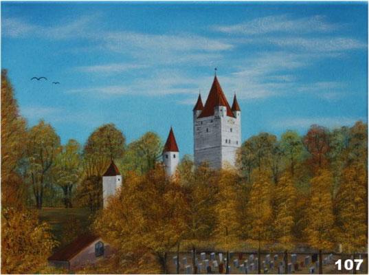 Nr.107 Haager Burg westliche Ansicht. Format 30x40cm