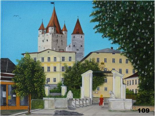 Nr.109 Haager Burg mit Institut. Format 30x40cm