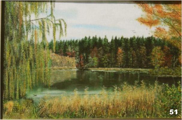 Nr.51 Altensee an der B15 zw. Haag und Wasserburg. Format 40x60cm