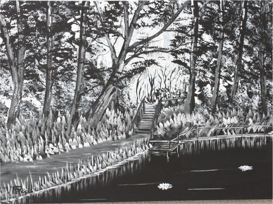Nr.4j Vollmond im schwarzen Wald. Format 30x40cm