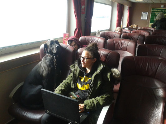 Schottland_Uist_Fähre_Lochmaddy_Reisetagebuch_Reiseblog_Wohnmobil_Die Roadies_Hund