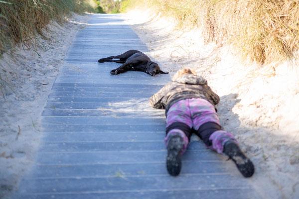Fotoworkshop_Fotokurs_Wie fotografiere ich Hunde