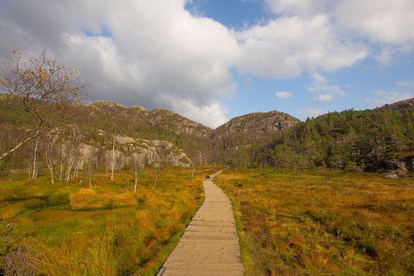 Wanderung_Preikestolen_Norwegen_Wohnmobil_Hund_Die Roadies