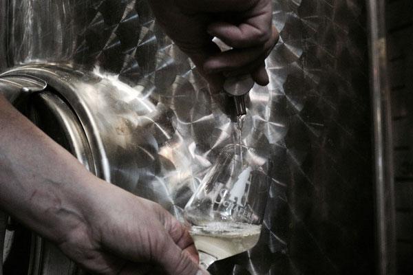 Weinkeller • Weinprobe • Weinglas • Hammelburg • Franken • Qualität
