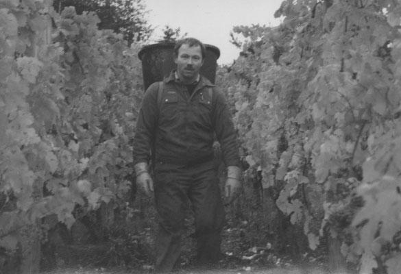 Klaus Schäfer • Butterträger bei der Weinlese