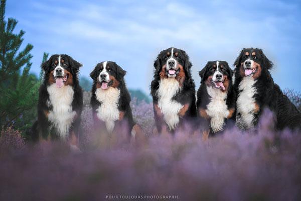 Ganz stolz habe ich der netten Fotografin meine tollen Kinder gezeigt ;-)