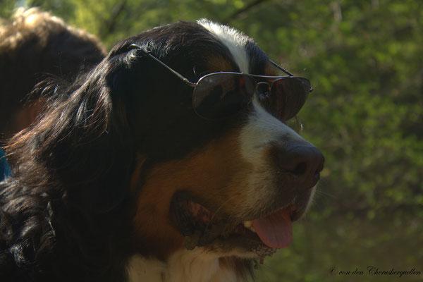 Und beim Chillen darf natürlich die Sonnenbrille nicht fehlen ;-)