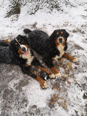 Anouk und Schwesterherz Athena :-)