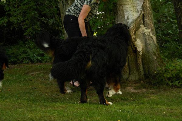 Frauchen und ich zeigen meiner Mama meinen Leckerchenbaum :-)