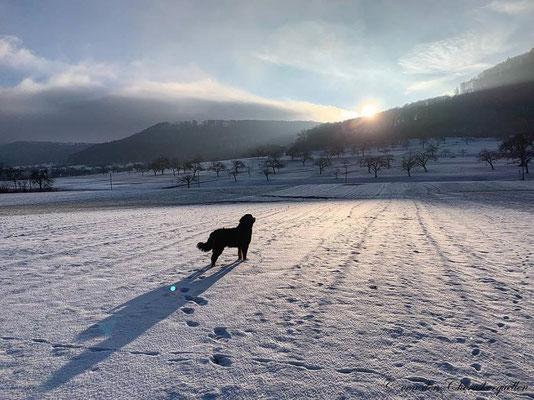 Mein Blick auf die schwäbsche Alp