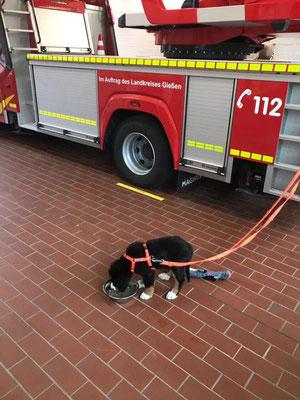 Ich habe mein eigenes Feuerwehrauto :-)
