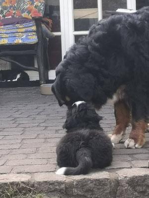 """""""Hallo Nukki, du warst also auch mal so klein wie ich? :-) """""""