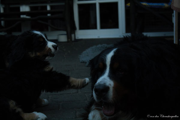 """Hey Mama, fang mich doch!"" ;-)"