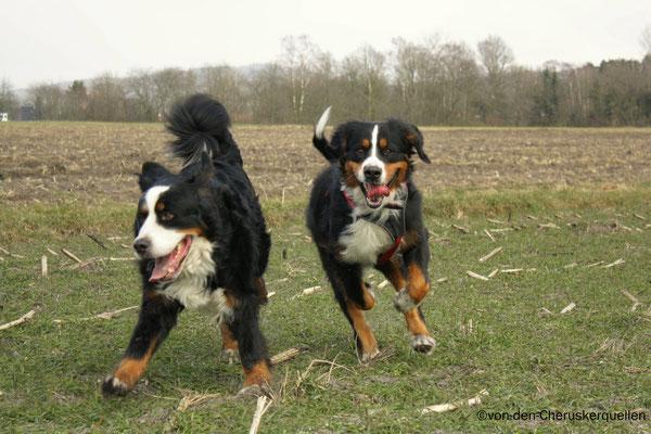 Wettrennen mit Kumpel Ares :-)