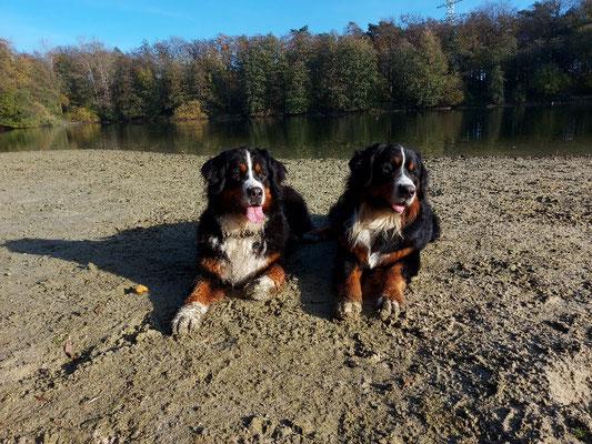 Sonnenbad genießen mit meinem Lütten Ballantines :-)