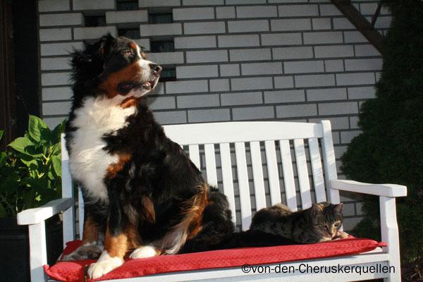 Merlin und ich gemeinsam beim Sonnenbaden