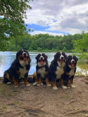 Meine drei hübschen Schwestern und ich 😊