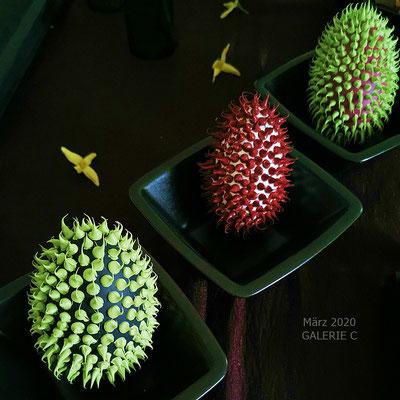 Aussehen ähnelt der Frucht RAMBUTAN