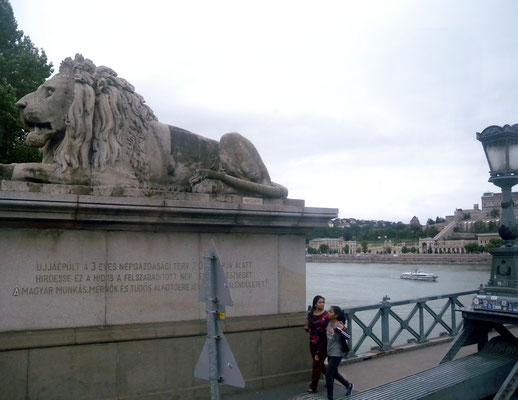 377 - Stadt der Brücken