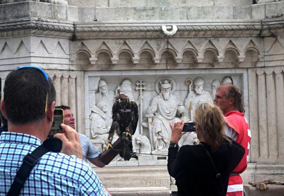 387 - Der Turul (Falke) als Touristenattraktion