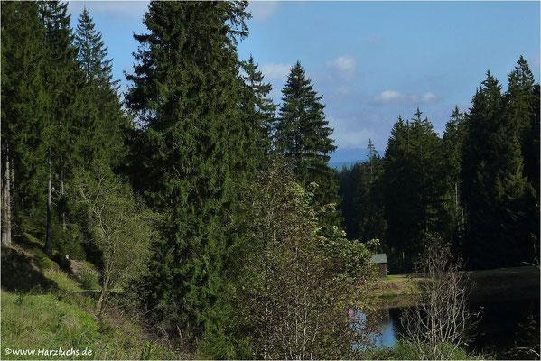am Lange Teich