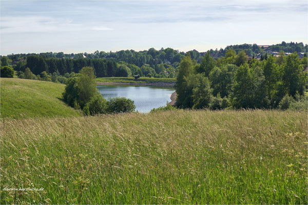 am Mittag war's noch sonnig ... am unteren Eschenbacher Teich