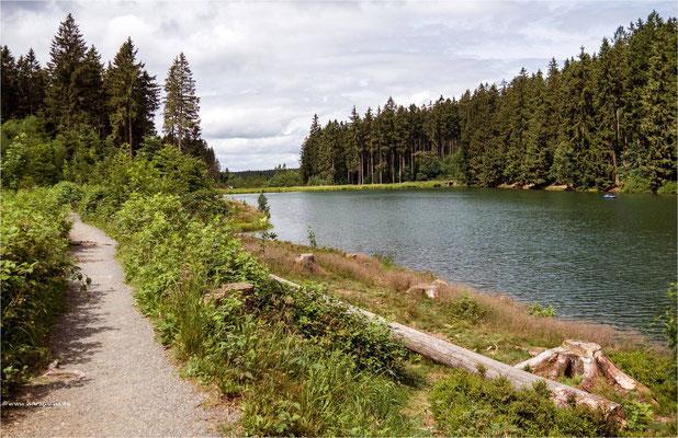 Mittlerer Grumbacher Teich .... bei Hahnenklee-Bockswiese