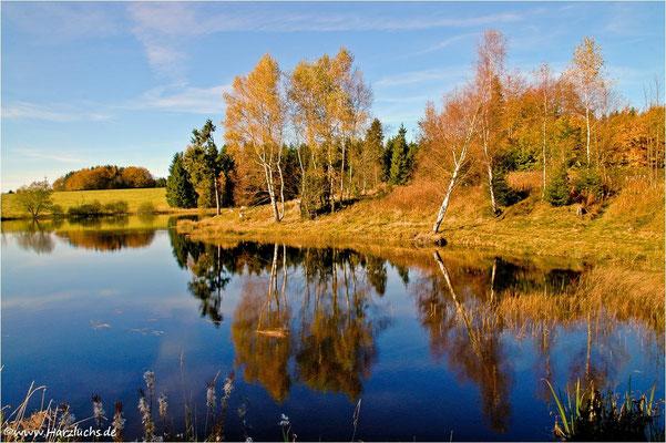 Langer Teich bei Clausthal-Zellerfeld