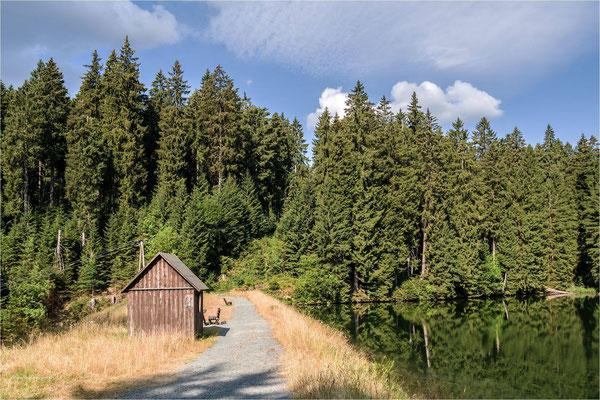Sommer im Harz ... am unteren Schalker Teich