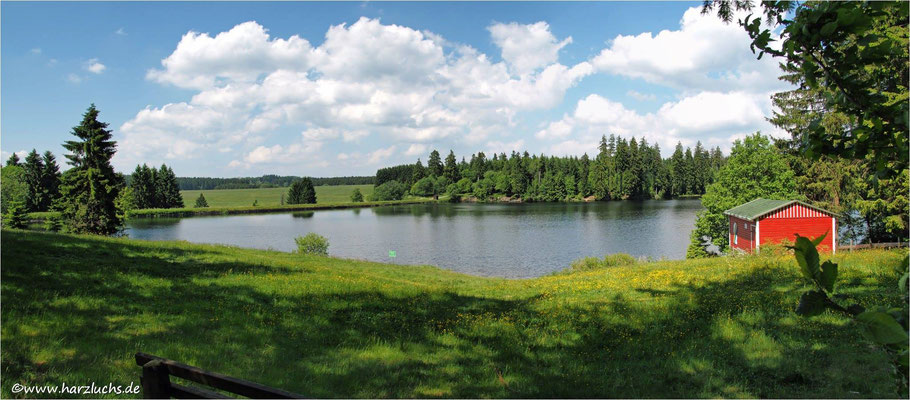 mal ein Panorama ... Ziegenberger Teich bei Buntenbock