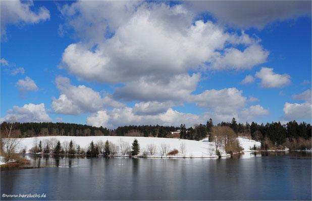 unterer Eschenbacher Teich