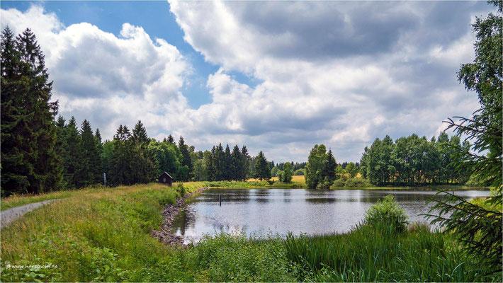 am Langer Teich ... bei Clausthal-Zellerfeld
