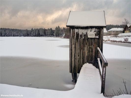 Winter im Harz ... oberer Hausherzberger Teich