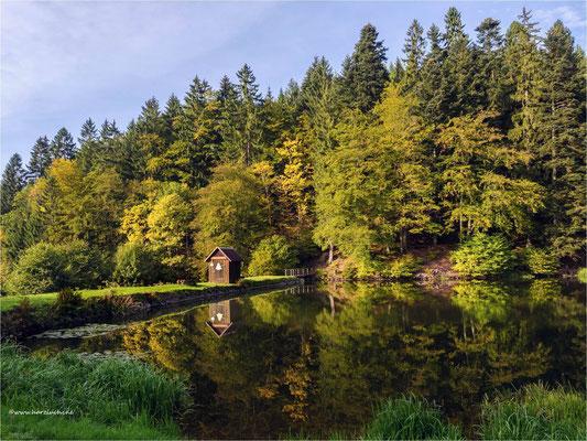 unverkennbar: es ist Herbst ... am Mühlenteich in Lerbach