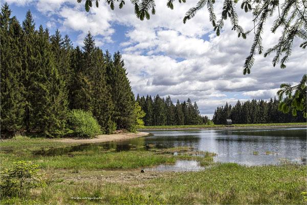 oberer Einersberger Teich