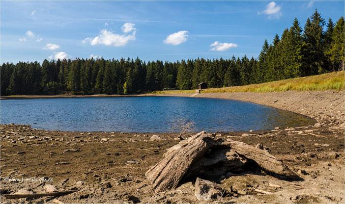 Niedrigwasser ... am Fortuner Teich