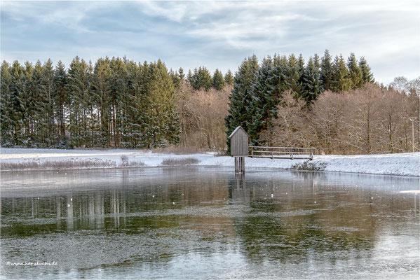 dünnes Eis ... auf dem Wasserläufer Teich