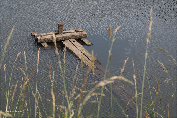 alte Striegelanlagen ... am unteren Eschenbacher Teich