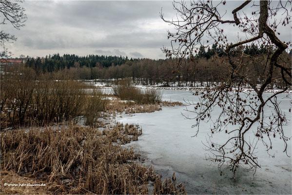noch ist Eis auf den Teichen ... wie hier am Eulenspiegler Teich