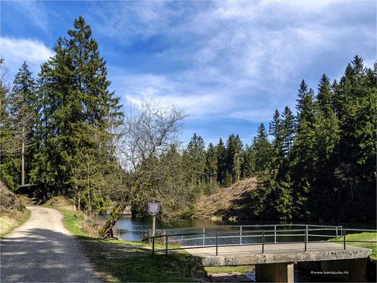 am unteren Grumbacher Teich ...