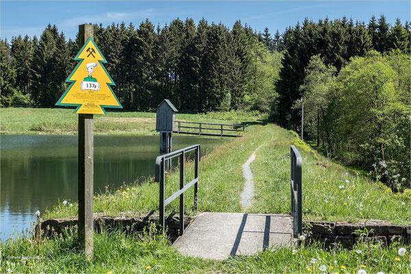 am Wasserläufer Teich ... bei Clausthal-Zellerfeld
