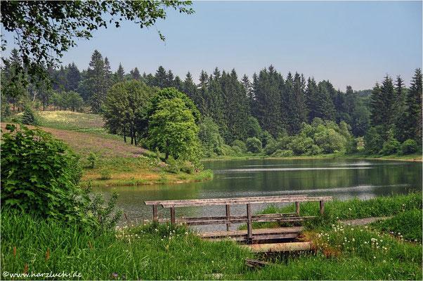 unterer Eschenbacher Teich ...